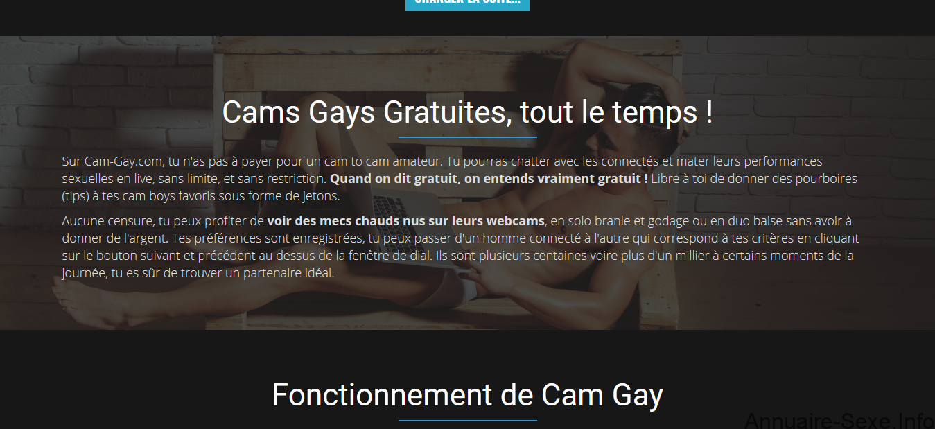 cam gay.png